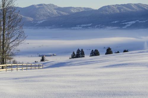 Winterliche Voralpenlandschaft bei Großweil, Oberbayern