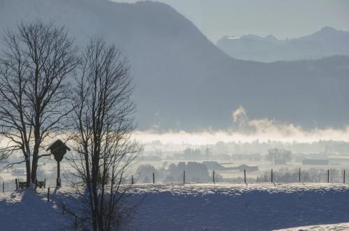 Blick in das Loisach Kochelsee Moor im Winter, Bayern
