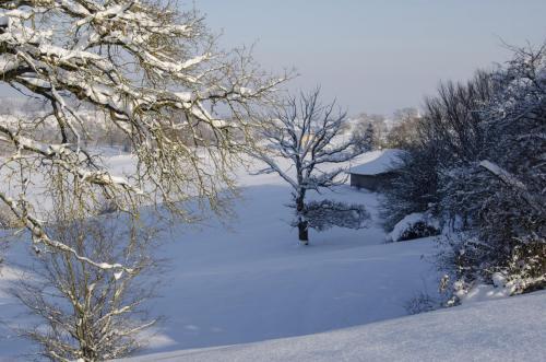 Stimmungsvolle Winterlandschaft im Alpenvorland, Bayern