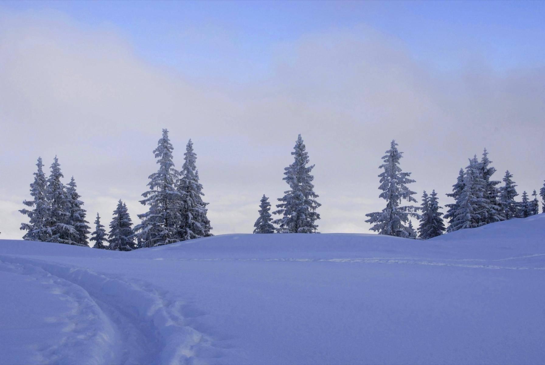 Winterliche Gebirgslandschaft