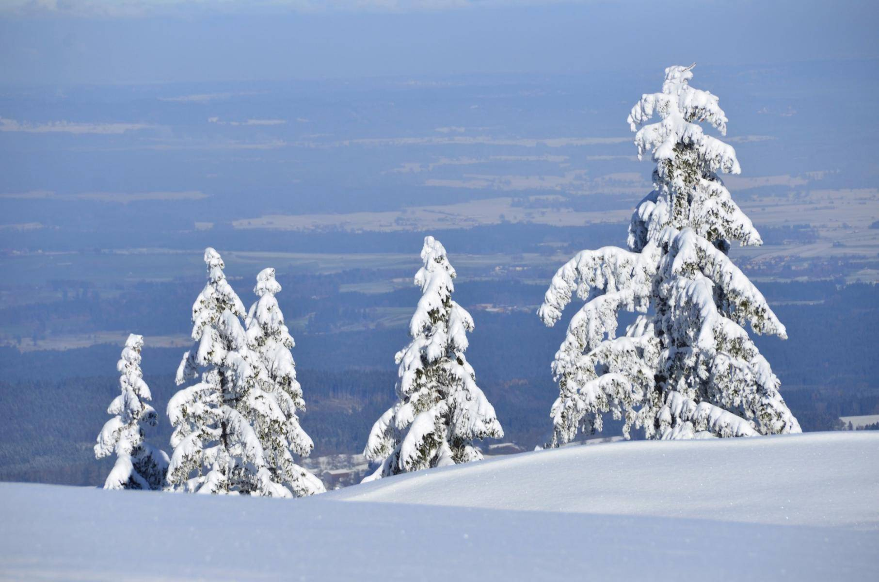 Winter am Hörnle bei Kohlgrub