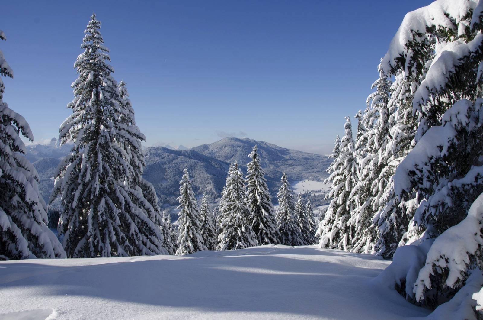 Winter in den Bergen,