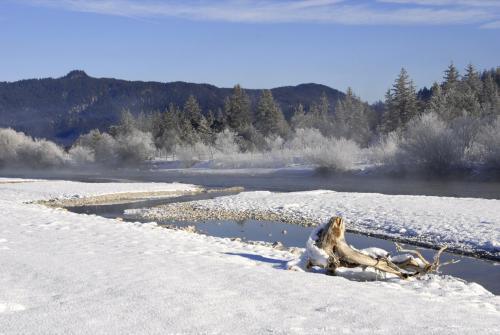 Winterstimmungen an der Isar