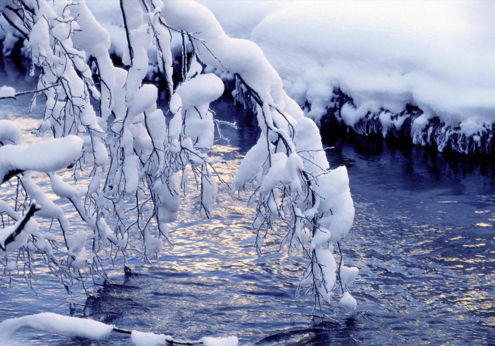 Schneebedeckter Ast an einem Bach