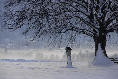 Wintermorgen im Ammergauer Tal