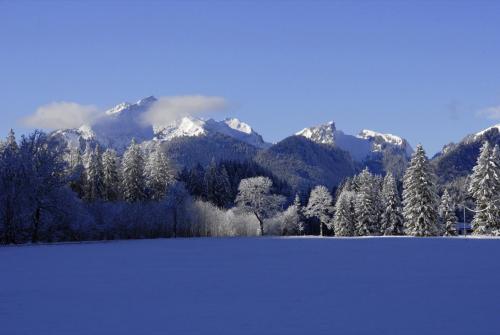Ammergauer Alpen im Winter, Nähe Schloß Linderhof