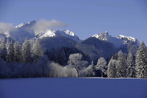 Ammergauer Alpen im Winter, Nähe Schloß Linderhof, Bayern