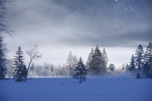 Graswangtal bei Oberammergau im Winter, Oberbayern