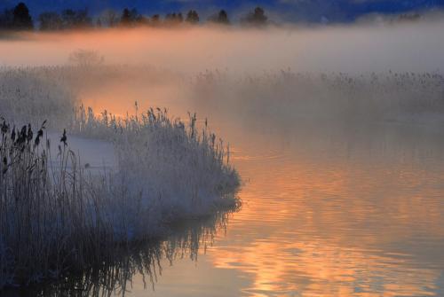 Wintermorgenstimmung am Staffelsee